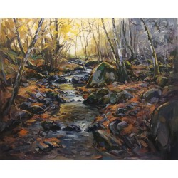 STREAM IN THE MONTSENY – 2...